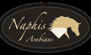 Naphis Arabians