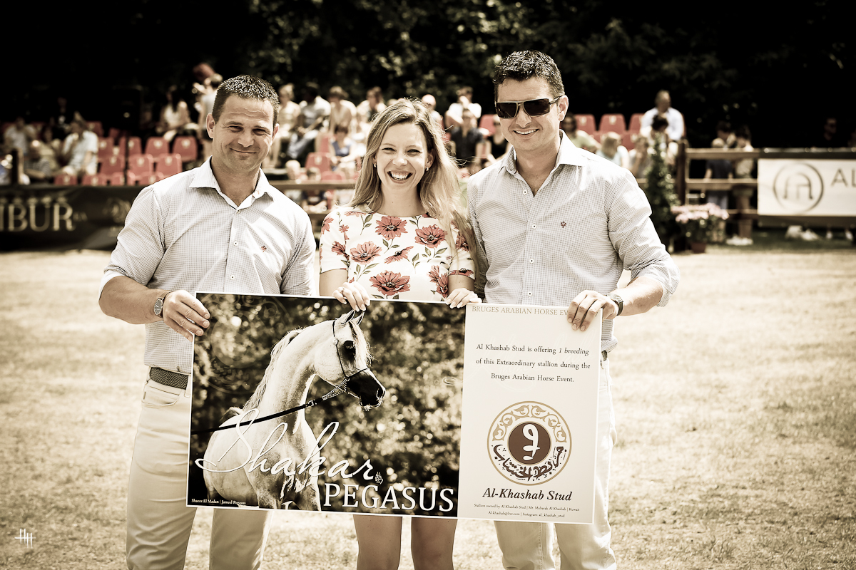 Bruges International Arabian Horse Event